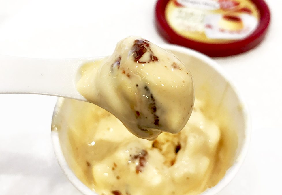 Haagen Dazs Custard Pudding